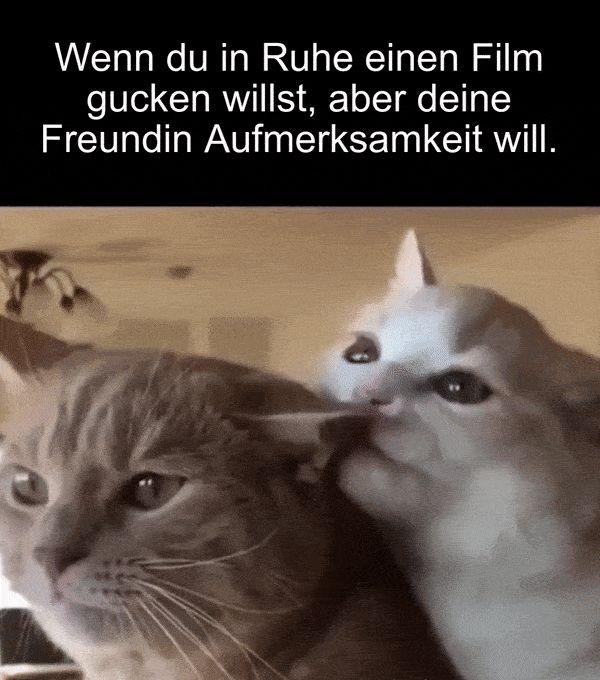 Einen Film Gucken