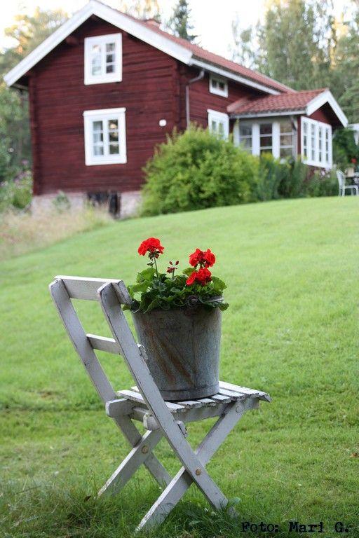 Timmrad stuga och röda pelargoner. Timbered house and geranium.