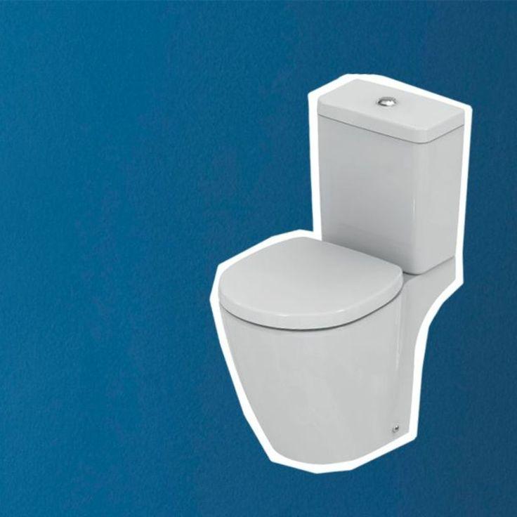 Peinture WC : les bonnes couleurs, bleu, gris (avec images) | Peinture wc, Toilette design, Déco ...