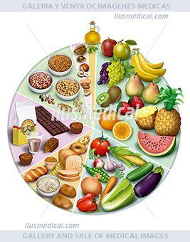 Ilustración rueda de alimentación sana y antioxidante. Información de los alimentos antioxidantes, indicando las ...