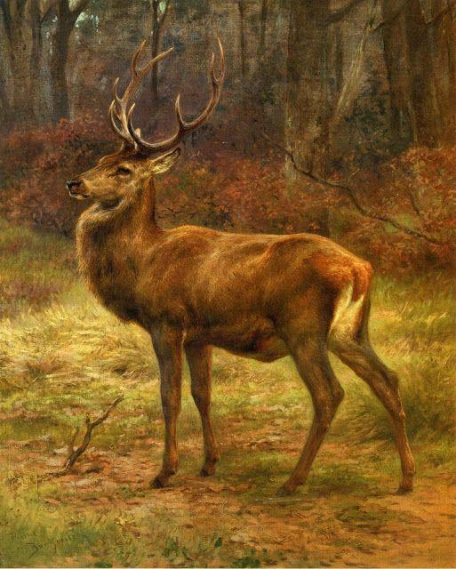 Rosa Bonheur (1822 - 1899) The Stag