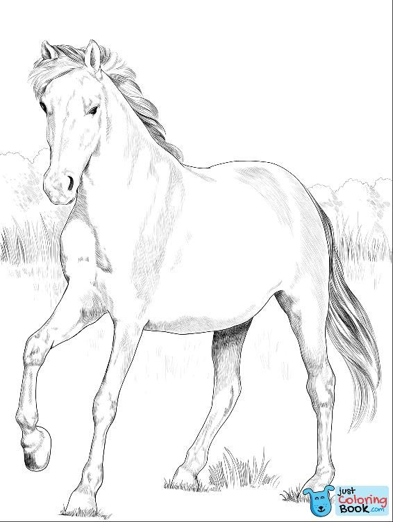 Spanish Mustang Coloring Pages Printable Free Download Malvorlagen Pferde Malvorlagen Tiere Ausmalbilder