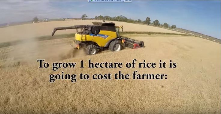 here a quick look in a rice harvest in Griffith NSW Australia and some number about rice crops.