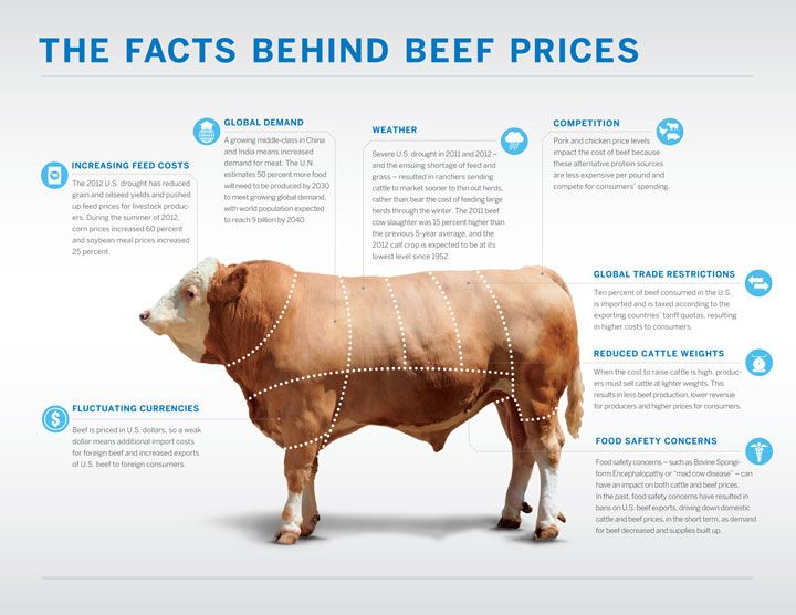 Learn what affects the price of beef, especially for 2013. My economics degree at play