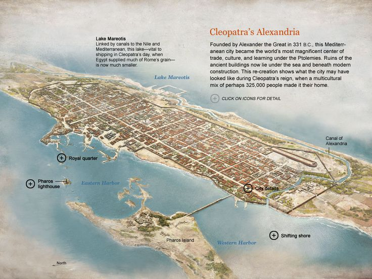 Cleopatra's Alexandria. Founded by Alexander the Great in 331BC, this Mediterranean city became a centre for trade, culture and learning under the Ptolemies. This National Geographic reconstructs what the city may have looked like under Cleopatra's reign when it was a multicultural home for 325,000 people.