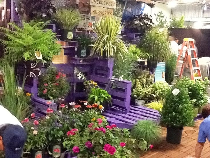 Garden display using pallets painted purple offsetting for Garden center designs