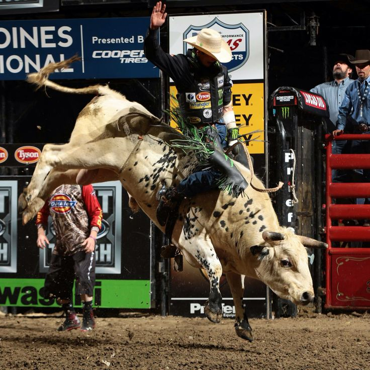 569 Best Pbr Images On Pinterest Cowboys Bull Riders