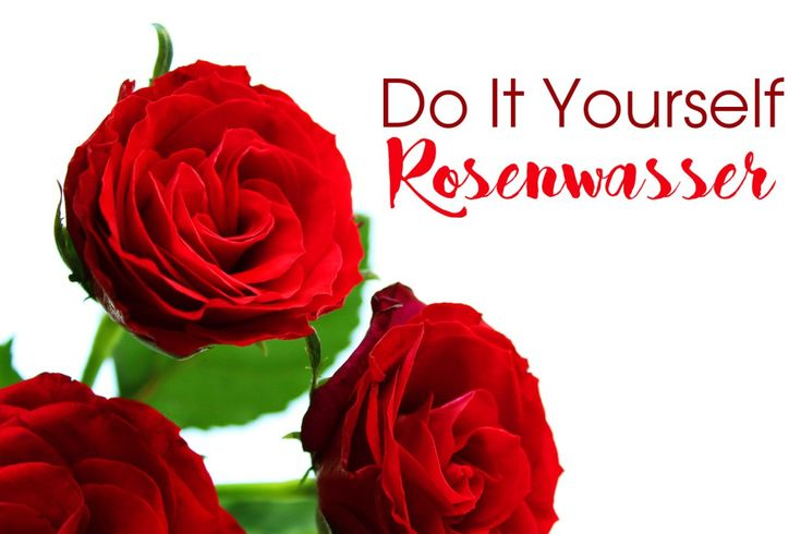 DIY Rosenwasser für die Gesichtspflege