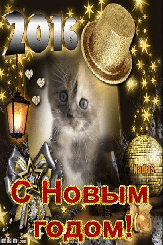 Живая открытка к новому году