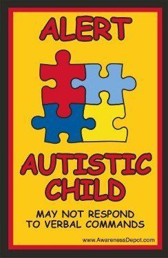 Autism Decal / Autistic Child Alert Window Clings for Hom