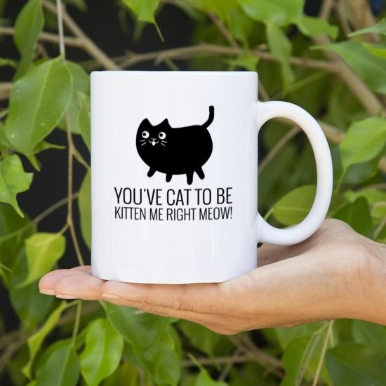 office cups. You\u0027ve Cat To Be Kitten Office Cups C