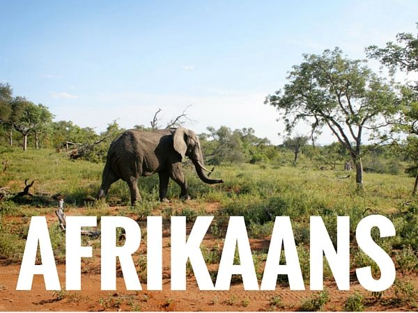 Learn Afrikaans - Afrikaans Books, Courses, and Software