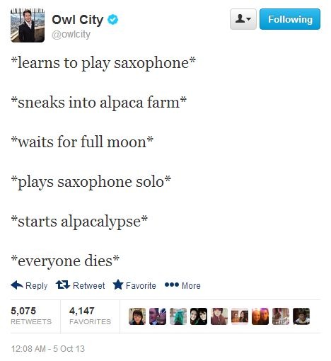 Seriously why does he keep mentioning alpacas its killing me cause alpacas and me and Gah I love this human