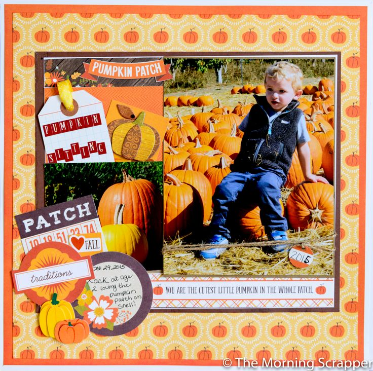 Pumpkin Sitting at the Patch - Echo Park - The Story of Fall Collection