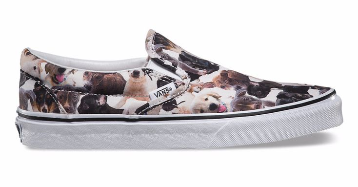 Love Shoes and Your Dog? Check these out! – AngusPost