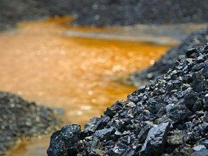 The Immorality of Coal by Raja Jayaraman et al. - Project Syndicate