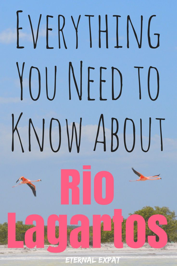 Everything you need to know about Rio Lagartos, Mexico, home of the pink lakes of Mexico! This national park is absolutely beautiful!