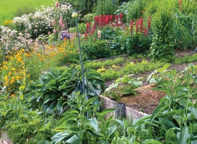 Un Potager De Montagne Palier L Gumes Et Jardin Balcon