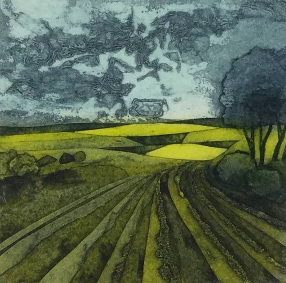 Field of Dreams, Sarah Ross Thompson - Will's Art Warehouse - contemporary fine art and gallery, modern oil paintings