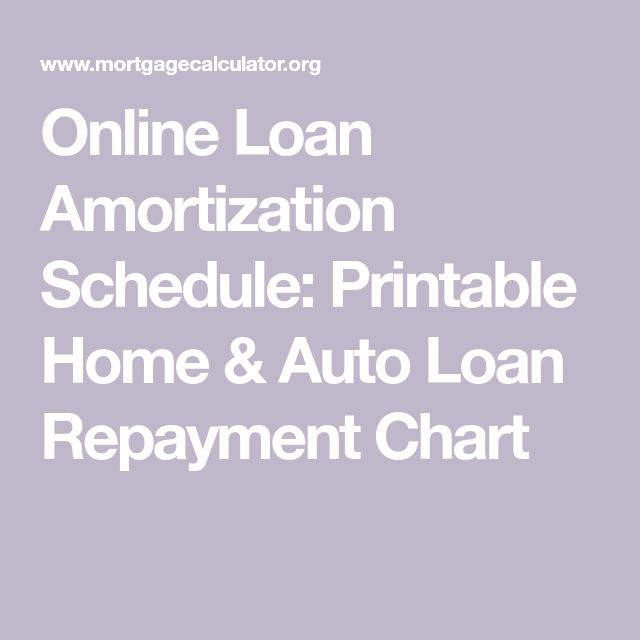 The  Best Amortization Schedule Ideas On   Student
