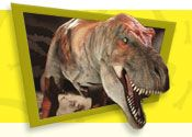"great dino site for kids! dino facts, games and a ""what dino are you"" quiz"