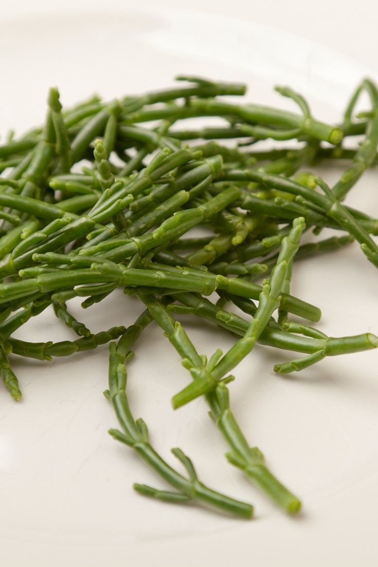 Learn how to cook samphire and find out what samphire goes with in this useful guide to cooking samphire from Great British Chefs.