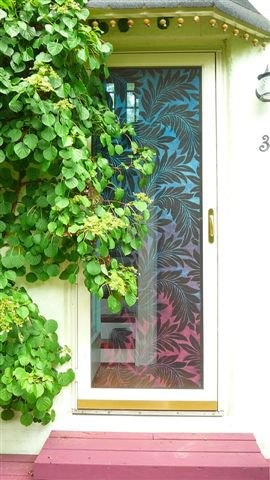 Painted screen door...I might consider having one like this!