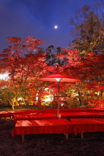 Cute little romantic spot...   #Japan