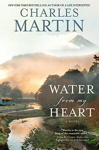 Water from My Heart: A Novel by Charles Martin http://smile.amazon.com/dp/1455554707/ref=cm_sw_r_pi_dp_gq5rvb0K1070Y