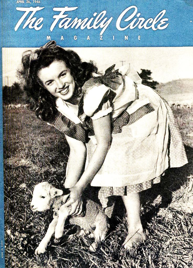 norma jean analysis Essay bobbie ann mason-shiloh- setting analysis center of attraction of this narrative is a married couple, leroy moffitt and his wife, norma jean.