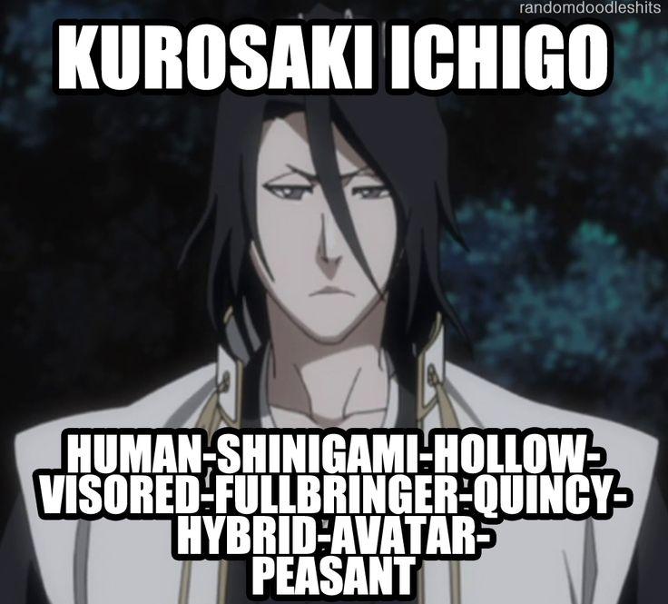 Kurosaki Ichigo, as defined by the great Byakuya Kuchiki