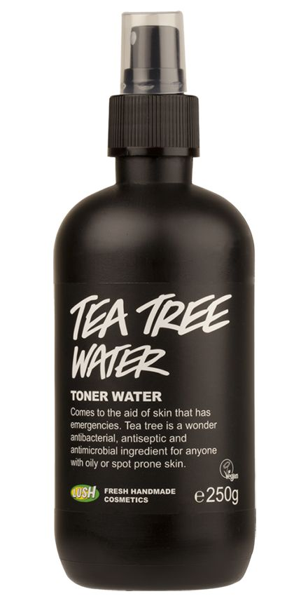 Our 5 Favorite Tea Tree Oil Beauty Products