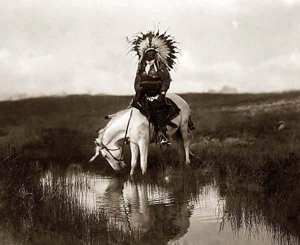 You are viewing an impressive image of Valley Rosebud, a Cheyenne Chief. It was taken in 1905 by Edward S. Curtis. The picture shows a Cheyenne Indian Warrior, wearing a feather head dress, on horseback. The horse is drinking water from a small stream We have created this collection of pictures primarily to serve as an easy to access educational tool. Contact curator@old-picture.com. Image ID# 702B2848