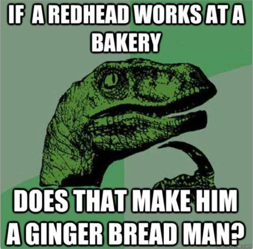 philosoraptor: Red Head Jokes, Ginger Jokes, Philosoraptor Hahaha, Redhead Works, Hmmm Haha, Gingerbread Man, Hahaha Chris