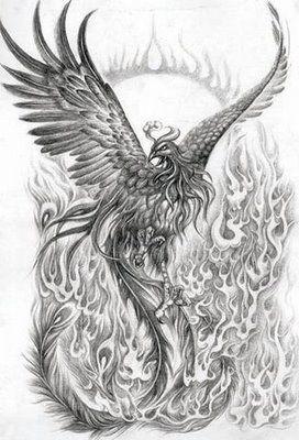 Phoenix tattoo                                                                                                                                                                                 Plus