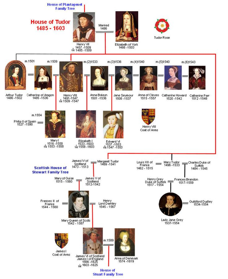 House of Tudor Family Tree   Royal Descendants | Alfred to Elizabeth II | Wessex | Normans | Plantagenet | Tudor | Scottish | Stuart | Hanover | Windsor   << Previous TreeMouse over images and click for informationNextTree >>