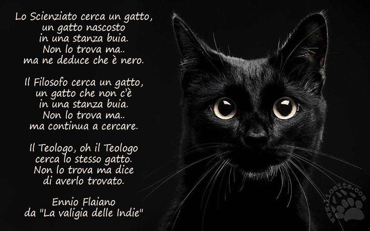 """670.Lo Scienziato cerca un gatto, un gatto nascosto in una stanza buia. Non lo trova ma.. ma ne deduce che è nero.  Il Filosofo cerca un gatto, un gatto che non c'è in una stanza buia. Non lo trova ma.. ma continua a cercare.  Il Teologo, oh il Teologo cerca lo stesso gatto. Non lo trova ma dice di averlo trovato. Ennio Flaiano da """"La valigia delle Indie"""""""