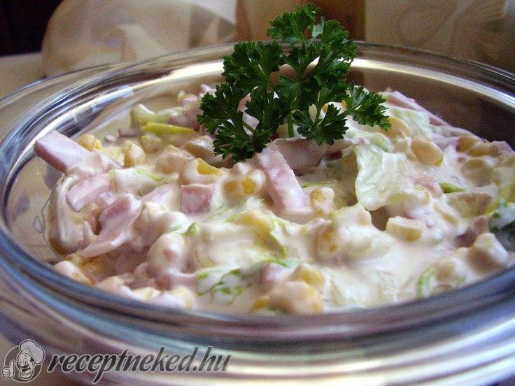 Kipróbált Brutus saláta recept egyenesen a Receptneked.hu gyűjteményéből. Küldte: Gyergyák Mária