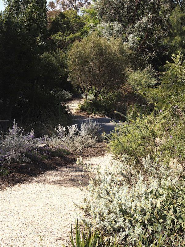 Walcott Garden | GardenDrum