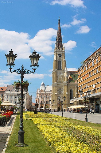 "Novi Sad: ""Capital of Vojvodina and, with a population of more than a quarter of a million, Serbia's second-largest city, Novi Sad is a relatively prosperous, commercial, industrial and university town on the north shore of the Danube in the Bačka region of the province."" Serbia: The Bradt Guide www.bradtguides.com"