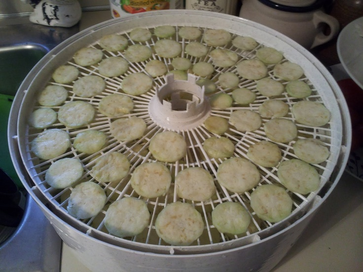 Dehydrating Eggplant - And what to do with it.