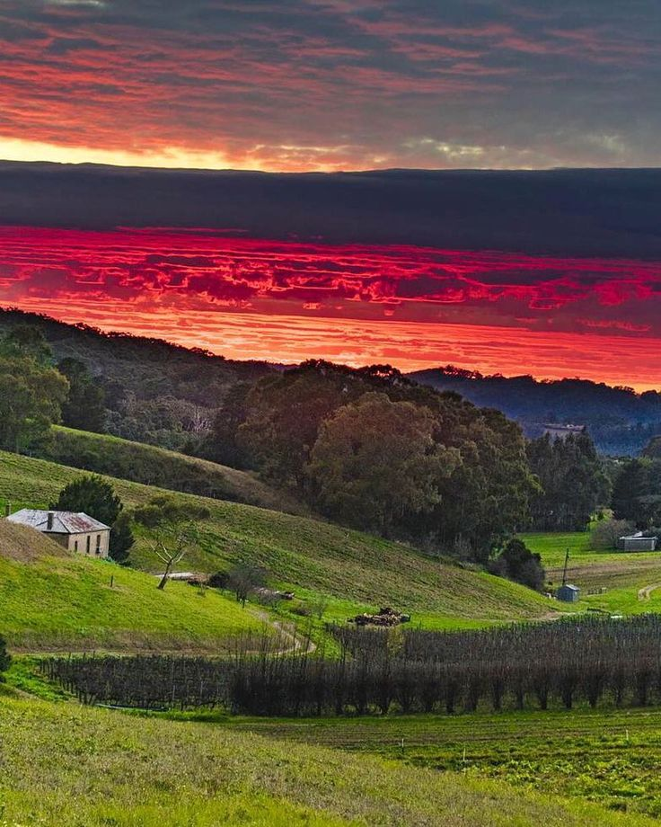 South Australia (@southaustralia) | Twitter South Australia‏Verified account @southaustralia  Jul 31   Reflecting the aptly named #WinterReds207 in @AHWineRegion Pic: gascoigne.chris http://bit.ly/AdHillsDrinkDining …