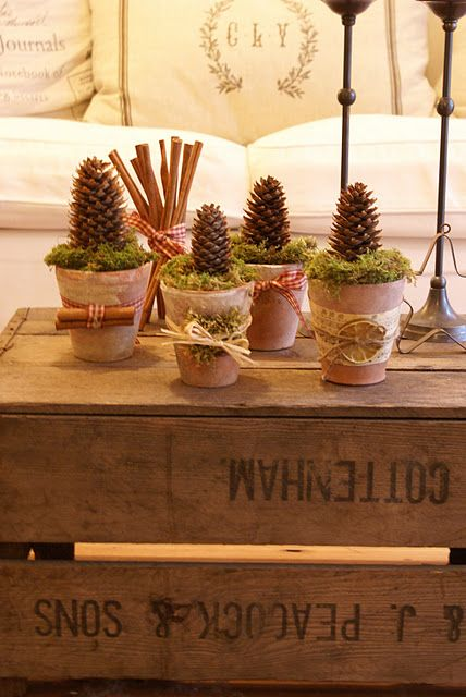 Jolis petits pots décorés et remplis de mousse et de pommes de pins