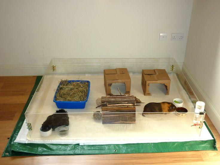 Homemade guinea pig cages member gallery c c cages for Homemade guinea pig