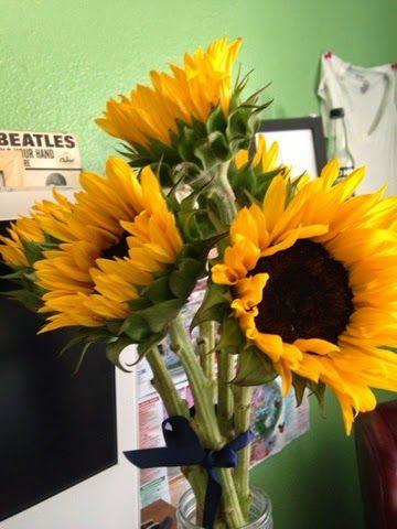 Brookelandia: Things I'm Looking Forward to in August 2014