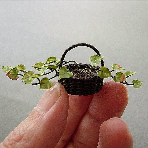 dollhouse miniature plants