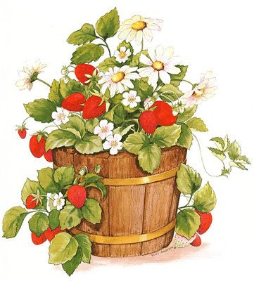 Strawberries in a barrel