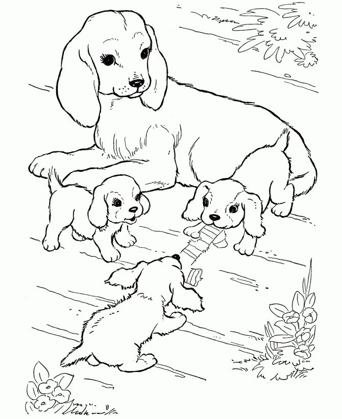 185 best images about Animal Coloring Pages on Pinterest  Free