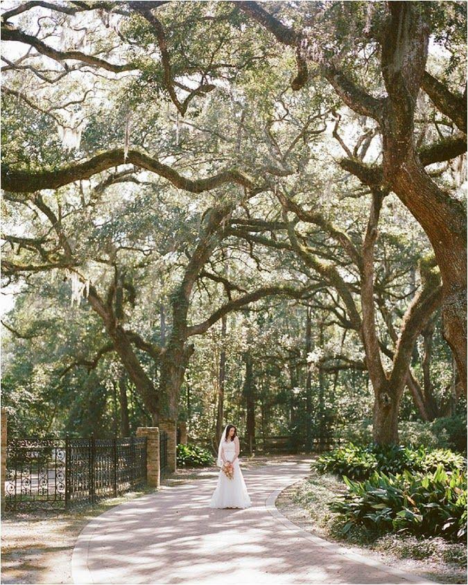 Eden Gardens State Park Wedding // see more on lemagnifiqueblog.com