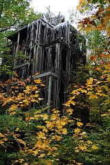 Treetops, a six story tree house in Ithaca!